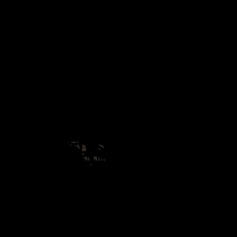 daniel-gic-servis-vozu